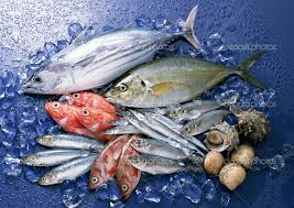 Fish List – Which Fish to Eat and not to Eat