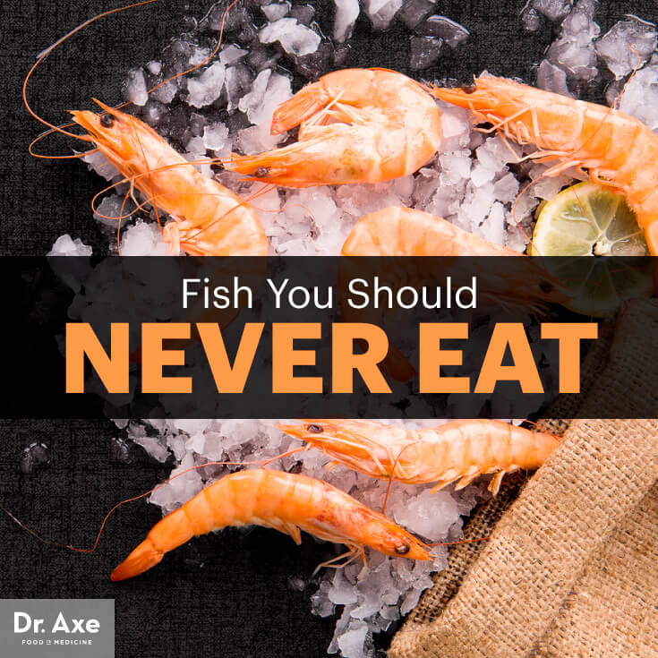 Fish -Which ones should You stay away from? Safe fish List