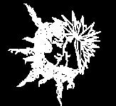 white_fee_logo-1
